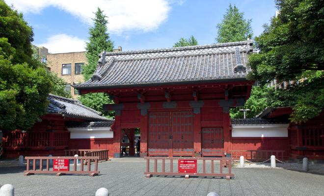 東京大学②
